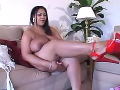 Megabusty ebony shows off