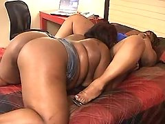 Fat black lezzies caress each other